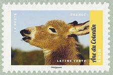 Non ne du cotentin salon international de l for Salon du timbre 2017