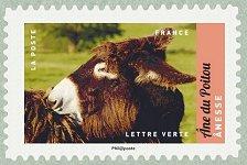 Nesse ne du poitou salon international de l for Salon du timbre 2017
