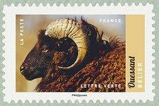 Ouessant belier salon international de l agriculture 2017 for Salon du timbre 2017