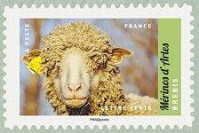 Brebis m rinos d arles salon international de l for Salon du timbre 2017