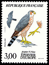 Image du timbre Epervier d'Europe - Accipiter N. Nissus